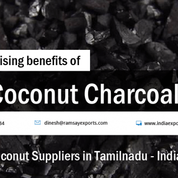 5 surprising benefits of Coconut Charcoal from cococnut suppliers in tamilnadu